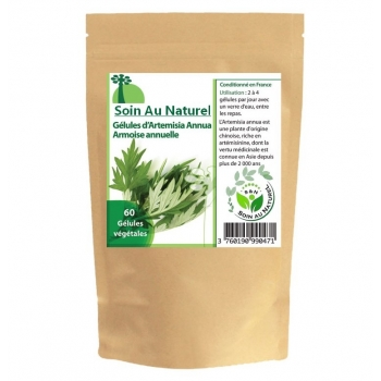 Artemisia annua (Armoise annuelle)